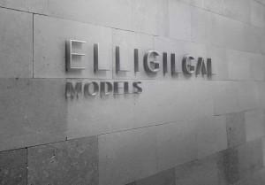 elligilgal_backdrop