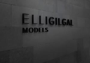 elligilgal_bg3